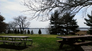 View of the water from the Fort McHenry picnic area.
