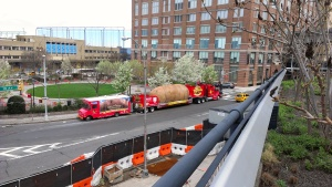 Picture of a giant potato we saw looking down from the High Line. You know just because.