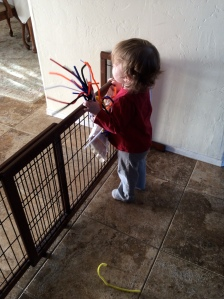 I stole all these pipe cleaners.