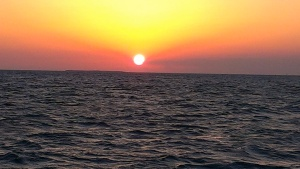 Sunset from sunset sail