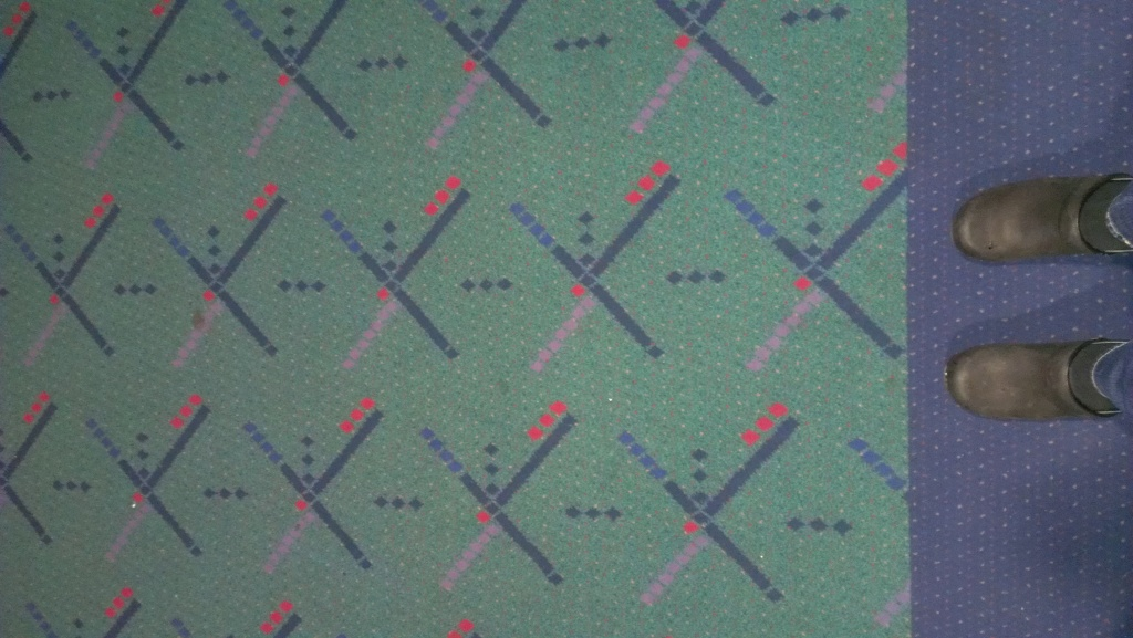 picture of carpet at PDX