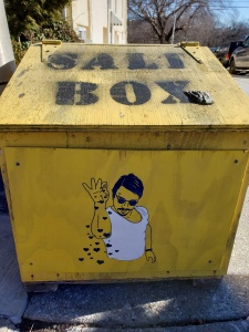 Freddie Mercury salt box art